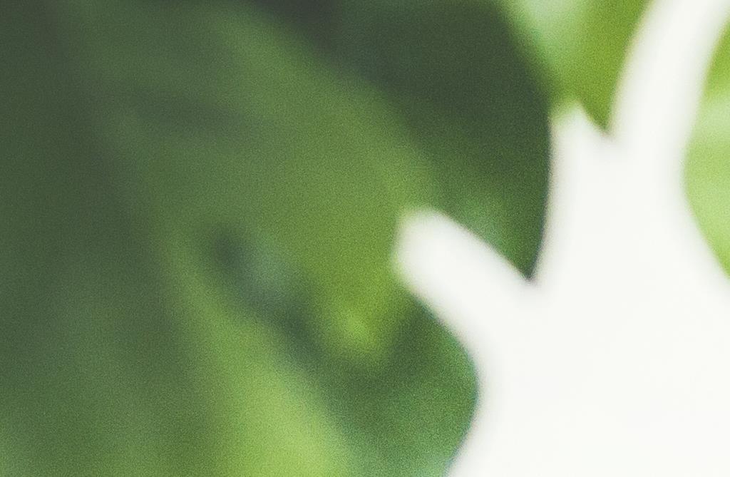 meikkipohjaa ecotoolsin work etusivulle